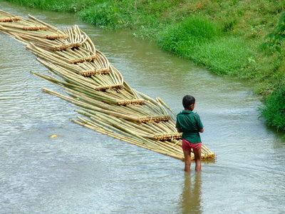 Bamboo transportation at Bandarban